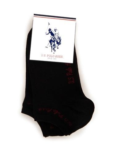 U.S. Polo Assn. Çorap Siyah